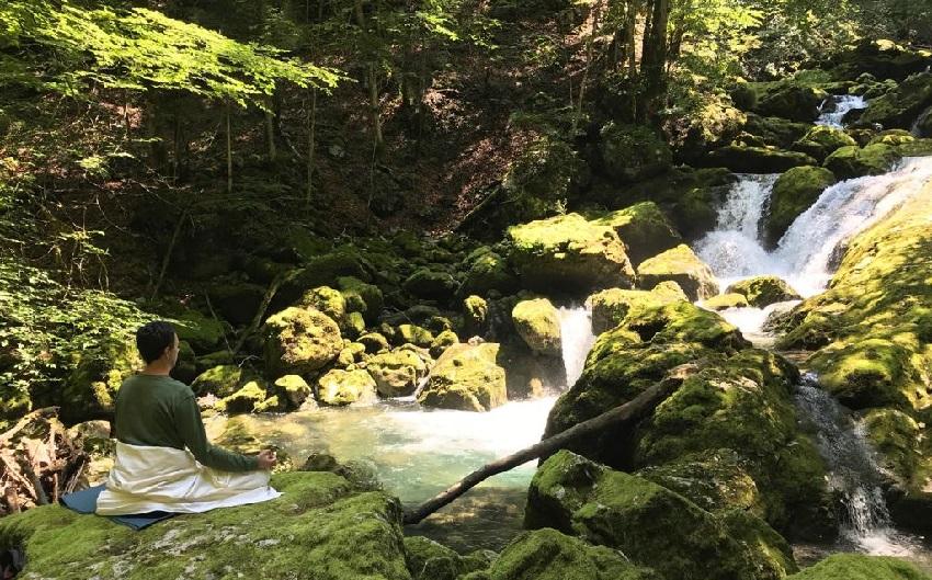 Meditacija u šumi